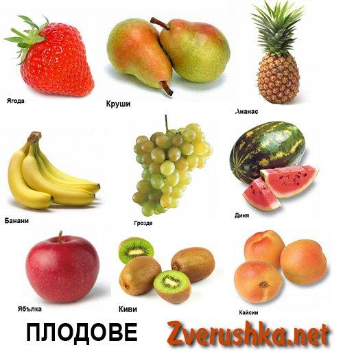 Картинки с плодове