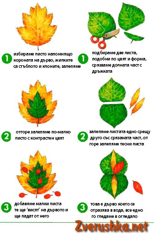 От природни материали 1313439664_applikaciya-iz-listev17